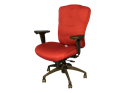 Picture of RX Comfort Chair